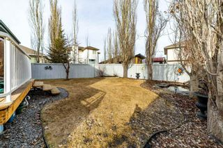 Photo 45: 4 Kendall Crescent: St. Albert House for sale : MLS®# E4236209