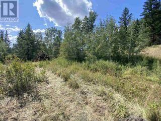 Photo 11: DL2350 TIMOTHY LAKE ROAD in Lac La Hache: Vacant Land for sale : MLS®# R2610977