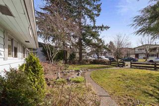 Photo 7: 3133 E 19TH Avenue in Vancouver: Renfrew Heights House for sale (Vancouver East)  : MLS®# R2549145