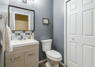 Photo 24: 95 Tipping Close SE: Airdrie Detached for sale : MLS®# A1099233