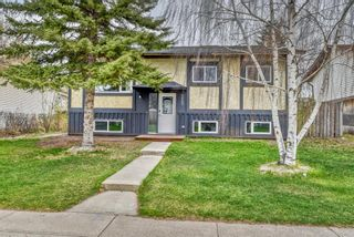 Main Photo: 215 Maple Grove Crescent: Strathmore Detached for sale : MLS®# A1104912