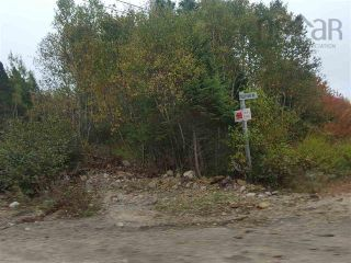 Photo 3: Tilley Point Road in Northwest Cove: 405-Lunenburg County Vacant Land for sale (South Shore)  : MLS®# 202121019