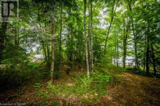 Photo 23: 0 MARKS POINT Road in Bancroft: Vacant Land for sale : MLS®# 40141117