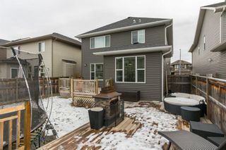 Photo 40: 56 AUBURN SHORES Manor SE in Calgary: Auburn Bay Detached for sale : MLS®# A1052787