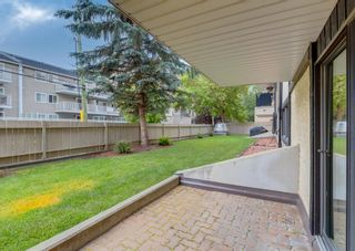 Photo 28: 110 727 56 Avenue SW in Calgary: Windsor Park Apartment for sale : MLS®# A1133912