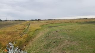 Photo 16: 26431 HWY 37: Rural Sturgeon County Rural Land/Vacant Lot for sale : MLS®# E4264709
