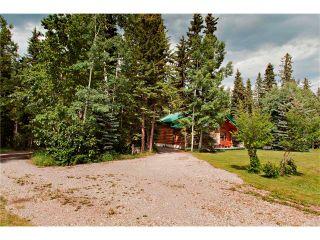 Photo 28: 2 Doyle Drive: Sundre House for sale : MLS®# C4022571
