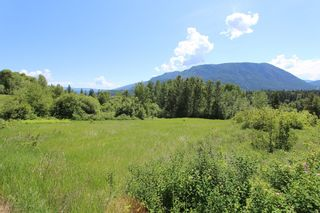 Photo 5: 37 2481 Squilax Anglemont Road in Lee Creek: North Shuswap Land Only for sale (Shuswap)  : MLS®# 10094382