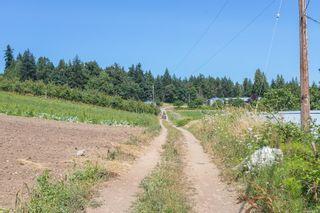 Photo 37: 304 Walton Pl in : SW Elk Lake House for sale (Saanich West)  : MLS®# 879637