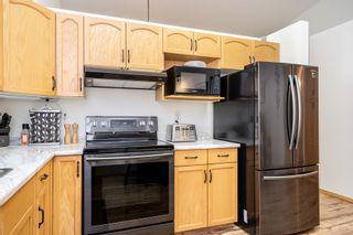 Photo 15: 290 Royal Mint Drive in Winnipeg: Southland Park House for sale (2K)  : MLS®# 202015783