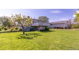 Photo 10: 2090 Allenby St in VICTORIA: OB Henderson House for sale (Oak Bay)  : MLS®# 700199