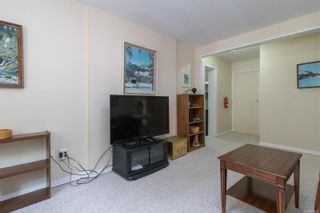 Photo 21: 2717 Roseberry Ave in : Vi Oaklands House for sale (Victoria)  : MLS®# 875406