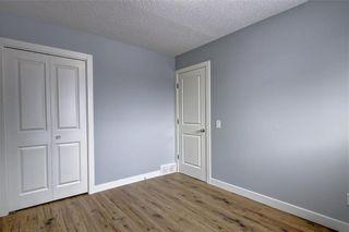 Photo 26: 1728 54 Street SE in Calgary: Penbrooke Meadows Detached for sale : MLS®# C4220376
