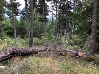 Photo 7: LOT 71 ALLEN CRESCENT in Pender Harbour: Pender Harbour Egmont Land for sale (Sunshine Coast)  : MLS®# R2430664