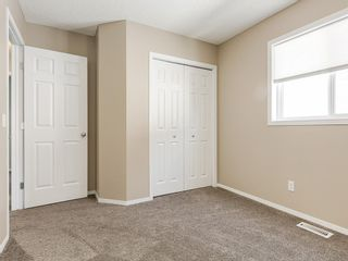 Photo 24: 247 COPPERFIELD Manor SE in Calgary: Copperfield Detached for sale : MLS®# C4297569