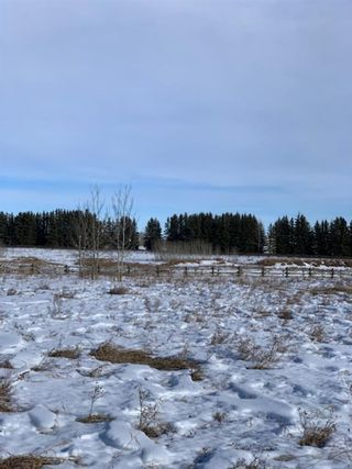 Photo 9: 298086 27 Street W: Rural Foothills County Residential Land for sale : MLS®# A1067248