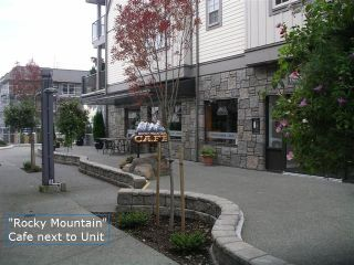 Photo 13: #308  1695 Comox Ave., in Comox: Condo for sale (FVREB Out of Town)  : MLS®# 284902
