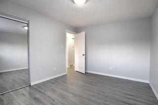Photo 14: 3210 30A Avenue SE in Calgary: Dover Semi Detached for sale : MLS®# A1055012