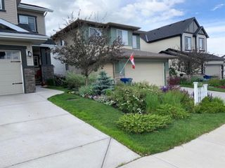 Photo 34: 2378 Reunion Street NW: Airdrie Detached for sale : MLS®# A1067245
