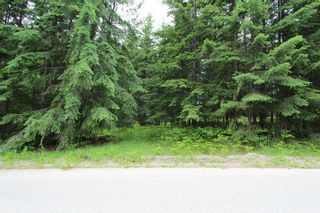 Photo 1: 108 Airstrip Road in Anglemont: North Shuswap Land Only for sale (Shuswap)  : MLS®# 10067018
