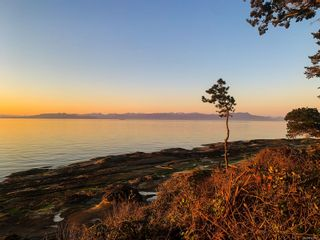 Photo 29: LOT A & B 570 Berry Point Rd in : Isl Gabriola Island House for sale (Islands)  : MLS®# 873831