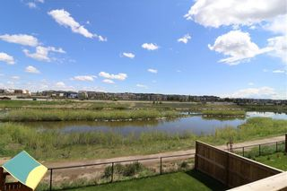 Photo 42: 121 WINDFORD Park SW: Airdrie Detached for sale : MLS®# C4288703