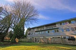 """Photo 16: 1053 CECILE Drive in Port Moody: College Park PM Townhouse for sale in """"CECILE HEIGHTS"""" : MLS®# V931590"""
