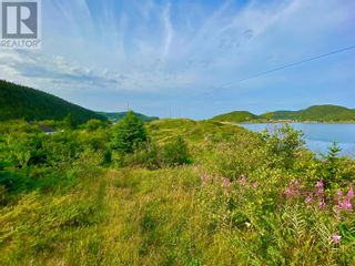 Photo 16: 0 Main Street in Moretons Harbour: Vacant Land for sale : MLS®# 1235758