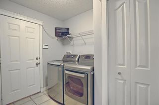 Photo 23: 196 Edgeridge Circle NW in Calgary: Edgemont Detached for sale : MLS®# A1138239