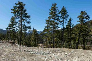 Photo 2: 9257 WEDGEMOUNT PLATEAU Drive in Whistler: WedgeWoods Land for sale : MLS®# R2575809