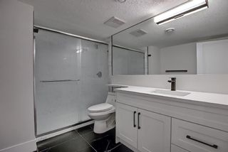 Photo 30: 428 Queensland Place SE in Calgary: Queensland Detached for sale : MLS®# A1123747