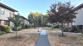 Photo 3: 60 3180 E 58TH Avenue in Vancouver: Champlain Heights Townhouse for sale (Vancouver East)  : MLS®# R2606901