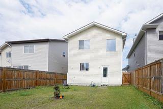 Photo 30: 27 Taralake Rise NE in Calgary: Taradale Detached for sale : MLS®# A1143830