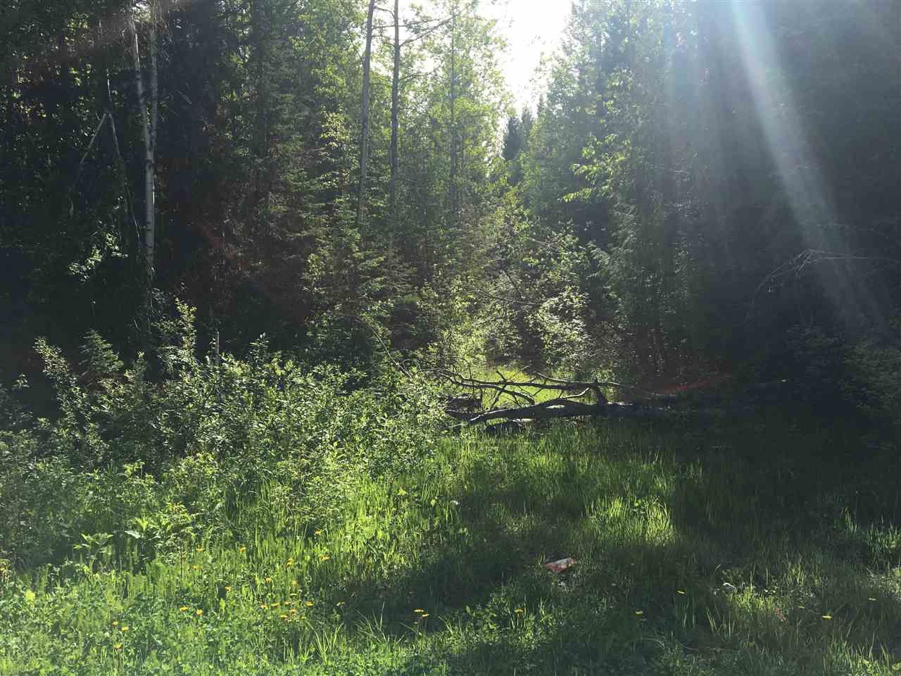 Photo 5: Photos: SHAVER ROAD in Quesnel: Quesnel - Rural North Land for sale (Quesnel (Zone 28))  : MLS®# R2461973