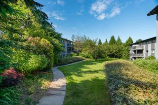 Photo 23: 128 200 WESTHILL Place in Port Moody: College Park PM Condo for sale : MLS®# R2589699