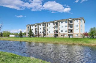 Photo 43: 204 300 Edwards Way NW: Airdrie Apartment for sale : MLS®# A1111430
