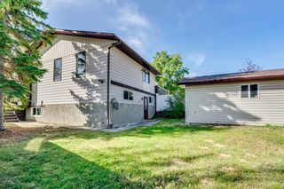 Photo 17: 230 EDGEDALE Place NW in Calgary: Edgemont Semi Detached for sale : MLS®# A1036042