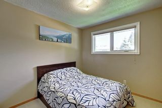 Photo 13: 3111 RAE Crescent SE in Calgary: Albert Park/Radisson Heights Detached for sale : MLS®# C4258934