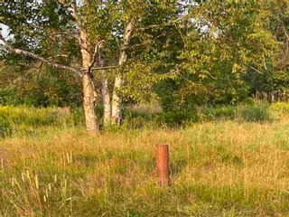 Photo 5: Our Lane in Caribou Island: 108-Rural Pictou County Residential for sale (Northern Region)  : MLS®# 202101788