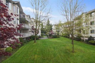 "Photo 2: 212 5363 206 Street in Langley: Langley City Condo for sale in ""PARKWAY II"" : MLS®# R2554116"