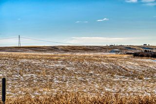 Photo 7: 64099 296 Ave. E: Rural Foothills County Land for sale : MLS®# A1049807