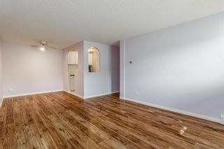 Photo 9: 104 17 13 Street NW in Calgary: Hillhurst Apartment for sale : MLS®# A1058350