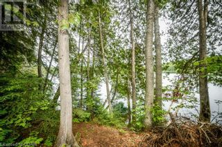Photo 18: 0 MARKS POINT Road in Bancroft: Vacant Land for sale : MLS®# 40141117