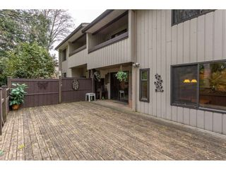 Photo 33: 3 4860 207 STREET in Langley: Langley City Townhouse for sale : MLS®# R2558890