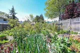 Photo 35: 2106 McKenzie Ave in : CV Comox (Town of) Full Duplex for sale (Comox Valley)  : MLS®# 874890