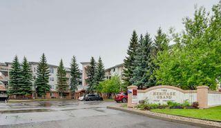 Photo 39: 401 10915 21 Avenue in Edmonton: Zone 16 Condo for sale : MLS®# E4249968
