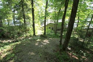 Photo 36: 95 Shadow Lake 2 Road in Kawartha Lakes: Rural Somerville House (Bungalow) for sale : MLS®# X4798581