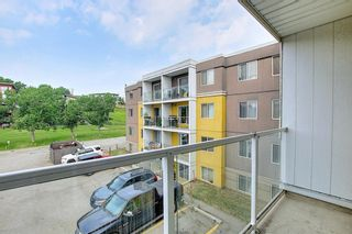 Photo 12: 303 4455A Greenview Drive NE in Calgary: Greenview Apartment for sale : MLS®# A1108022