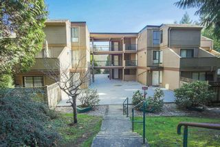 """Photo 1: 303 9155 SATURNA Drive in Burnaby: Simon Fraser Hills Condo for sale in """"Mountainwood"""" (Burnaby North)  : MLS®# R2042603"""