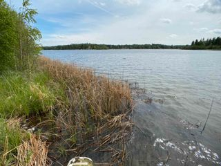 Photo 41: 9 52215 RGE RD 24: Rural Parkland County Rural Land/Vacant Lot for sale : MLS®# E4248791
